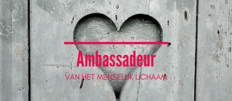 website-home-ambassadeur